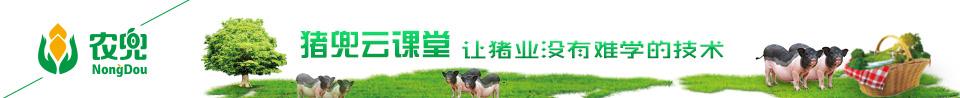 豬兜視頻直(zhi)播(bo)節目